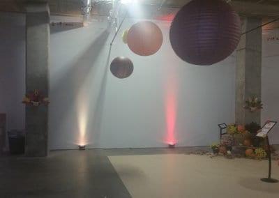 gallery (91)